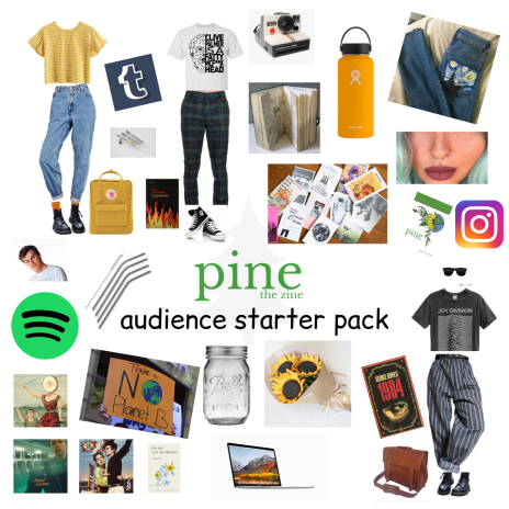 audience starter pack.png